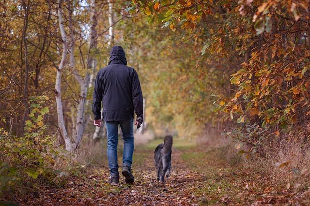 un homme se balade avec son chien en forêt